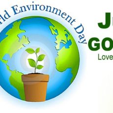 10 ways to celebrate World Environment Day