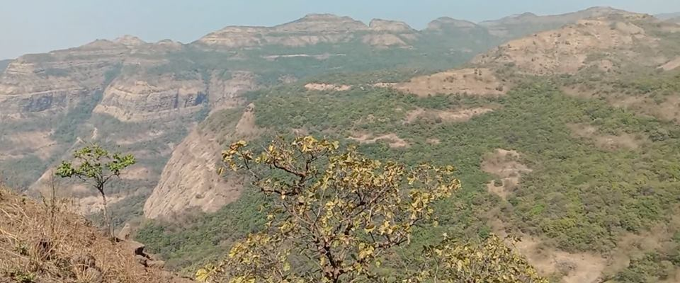 view from Kokandiva